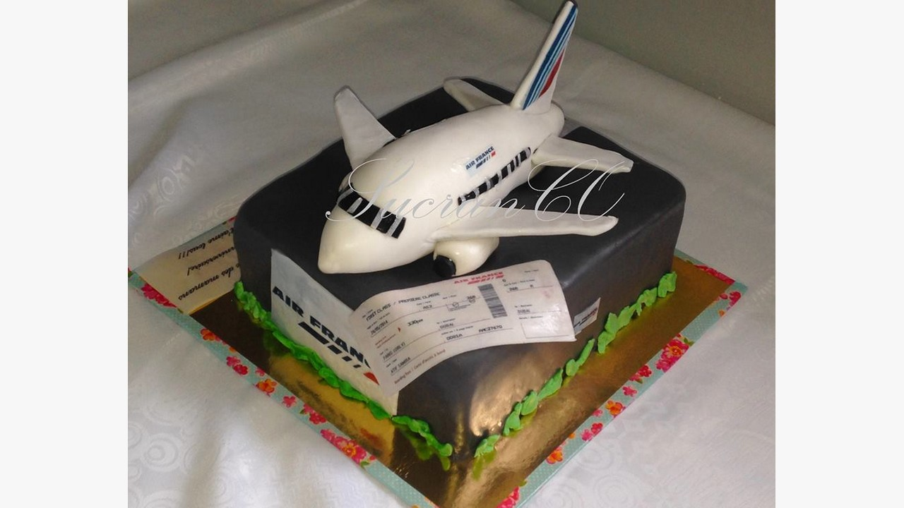 g u00e2teaux entrepris soci u00e8t u00e9 go u00fbt vanille pralin u00e9 air france avion voyage cake paris bleu blan rouge